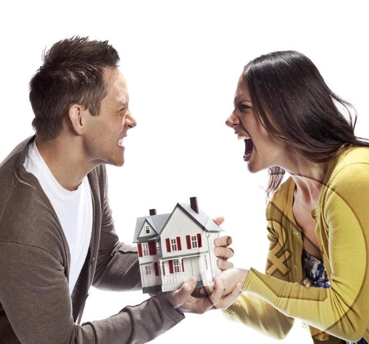 Семейные юристы по разделу имущества